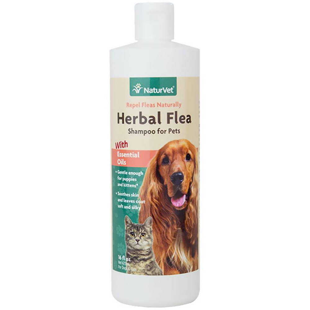 NaturVet NaturVet Herbal Flea Shampoo