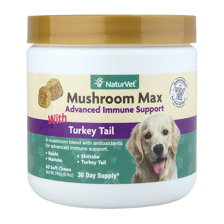 NaturVet NaturVet Mushroom Max