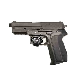 USED SIG SAUER SP2022 40 S&W NITRON FIXED DA/SA