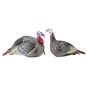 HUNTERS SPECIALTIES STRUT LITE JAKE & HEN DECOY COMBO