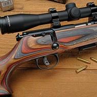 Rifle (rimfire)