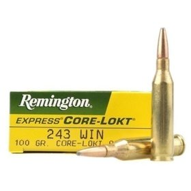 REMINGTON REMINGTON R243W3 234 WIN 100Gr PSPCL