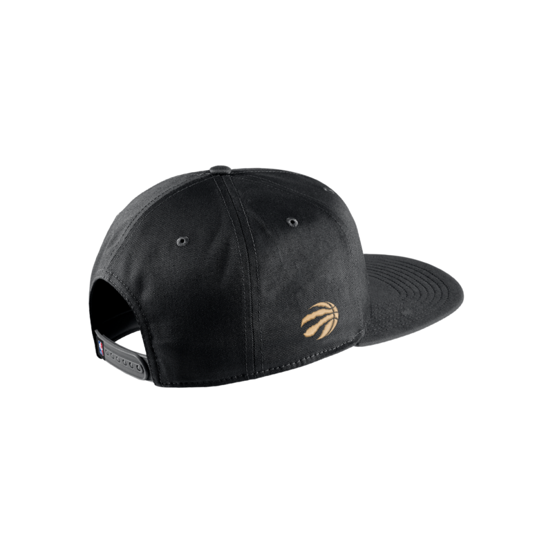 Nike Raptors City Edition Nike Pro NBA Adjustable Hat (CK1843)