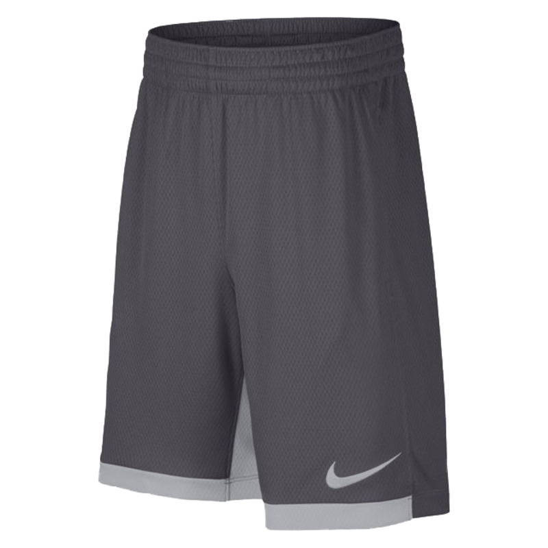 Nike Nike Kids Dri-Fit Swoosh Training Shorts 'Grey' 939655 021