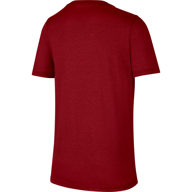 Nike Nike Big Kids' Dri-FIT Training T-Shirt Burgundy/Teal DC7655 010