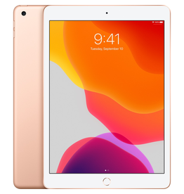 Apple 10.2-inch iPad Wi-Fi + Cellular 32GB - Gold