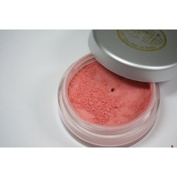 Cosmetics Persian Melon Personal Palette Signature Dry Loose Powder Mineral Blush