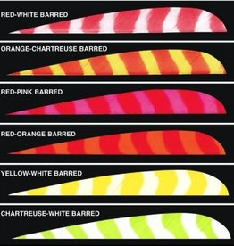Tru-Flite Trueflight Feathers Bright Stripes Barred Shield Cut - each