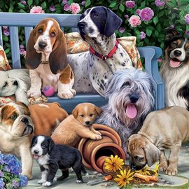 Dogs on a Bench Puzzle