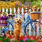 Puzzle Pedal Pups
