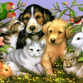 Loveable Pets Puzzle