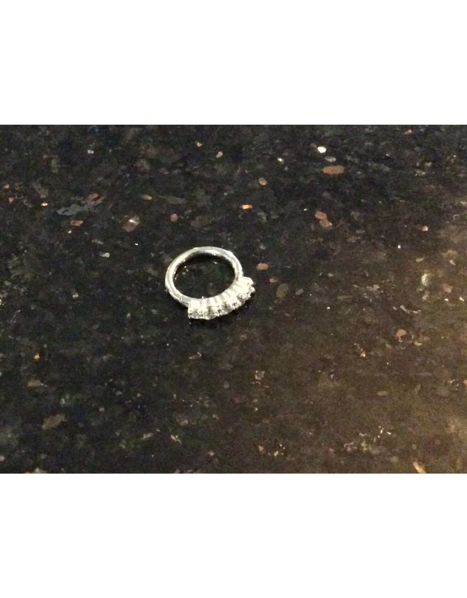 "16g 5/16"" SS 5-Prong CZ Outer Facing Hinged Ring"