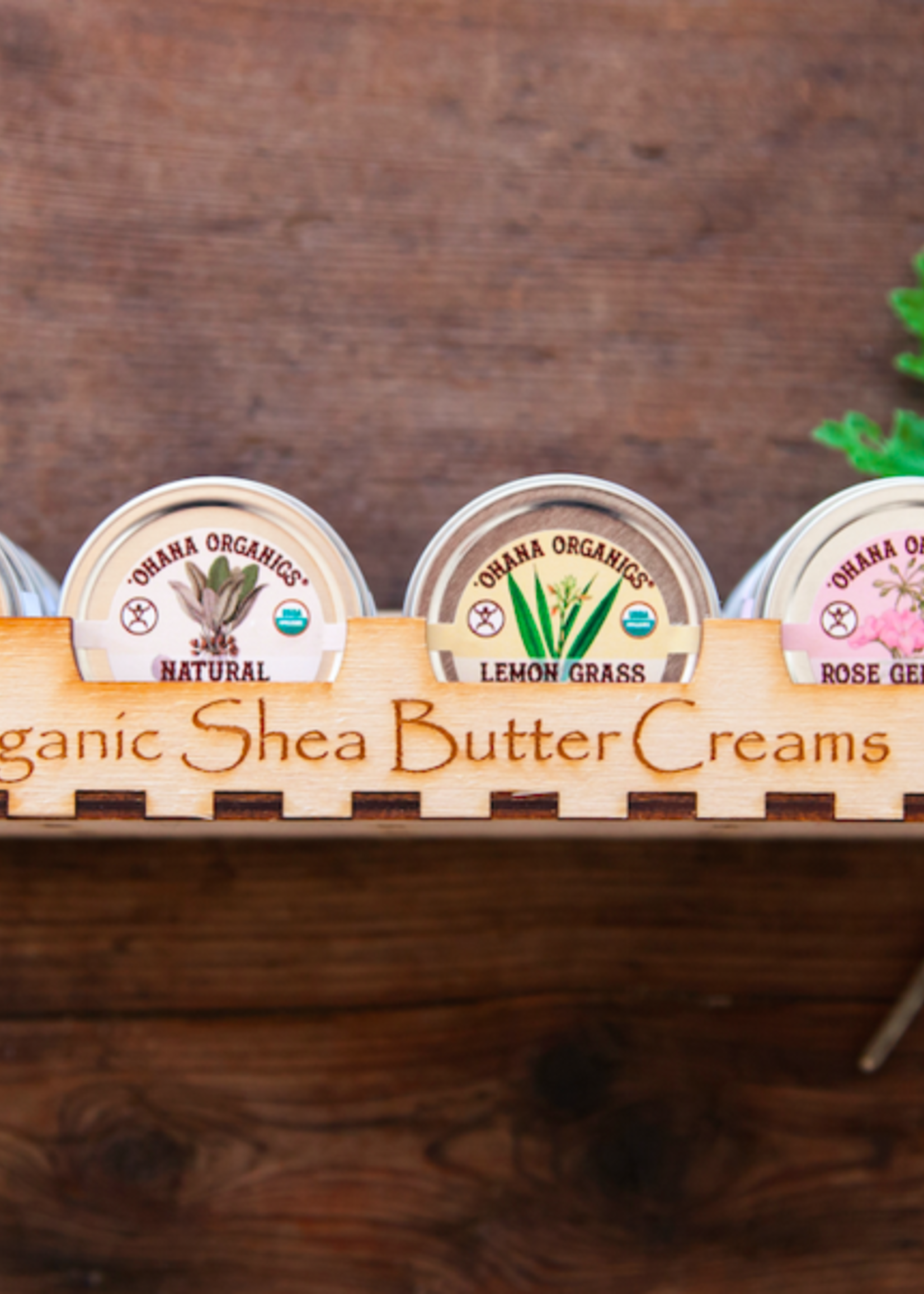 Lemon Grass Organic Shea Butter Cream - Travel Size