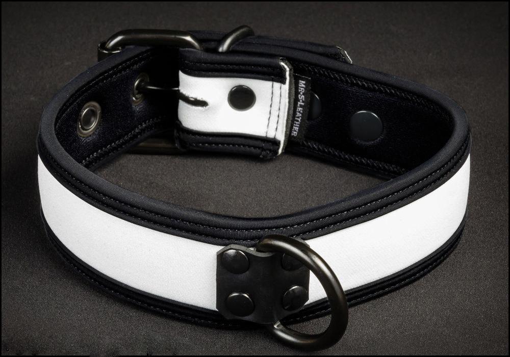 Neoprene Puppy Collar