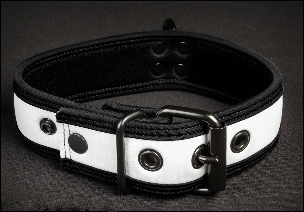 Neoprene Puppy Collar