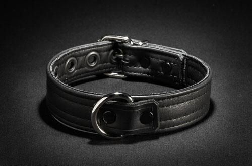 Mr. S. Leather Puppy Collar