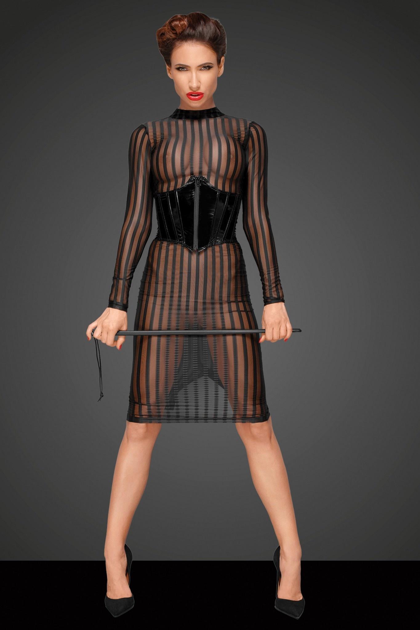 Sheer Classic Dress