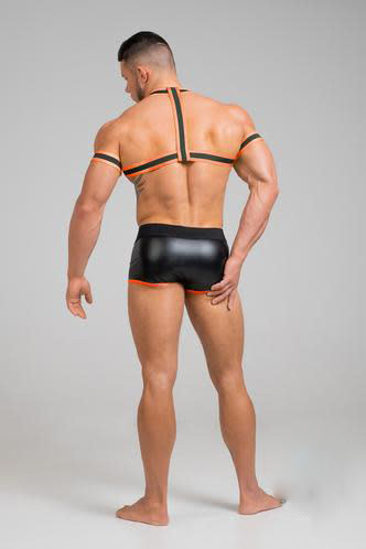 Maskulo Youngero Harness w/ Bicep Bands