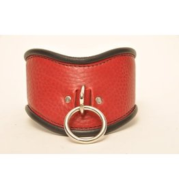 "Single Ring 2"" Posture Collar"
