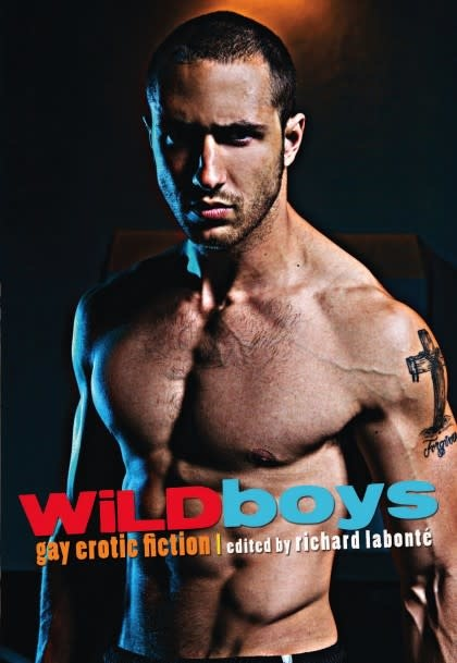 Cleis Press Wild Boys: Gay Erotica Richard Labonte, Ed.