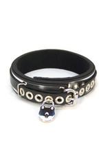 Lined Metal Band Bondage Collar