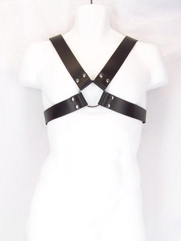 Basic X- Buckle Harness
