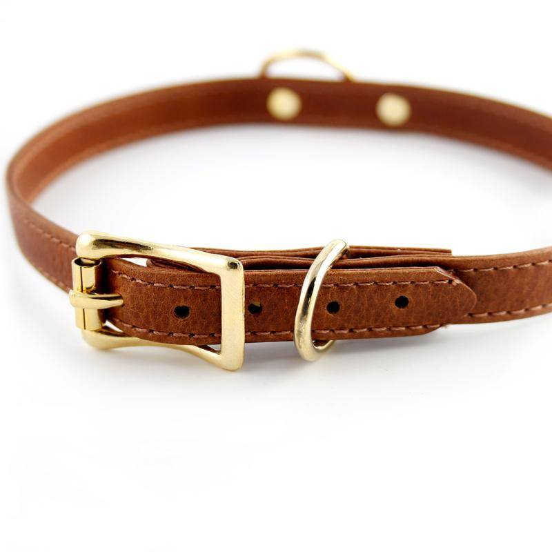 Burleska RG Classic Collar