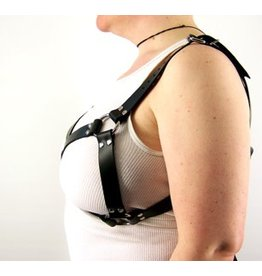 Leather Bra Harness