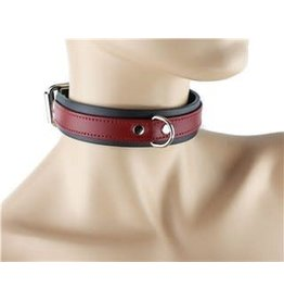 Leather Collar W/ D Ring