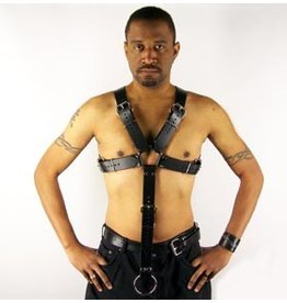 Basic X- Buckle Harness w/ Cock Strap