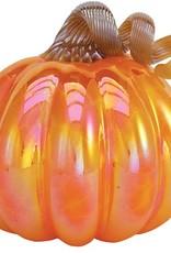 Enchanted Magic Pumpkin