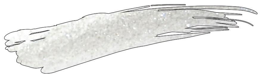 Akzentz Glitter Platinum Quartz