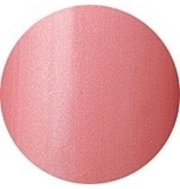 Nail Labo Presto Color Gel #11<br />Moderato