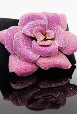 Pink Diamond Rose