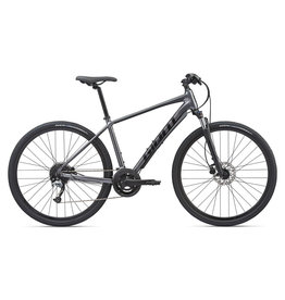 2020 Giant Roam 2 Disc