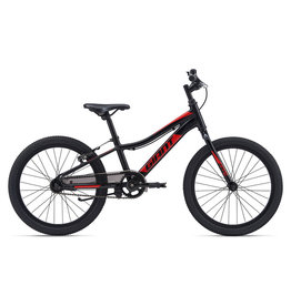 Giant 2020 Giant XTC Jr 20 C/B