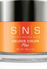 SNS Dipping Color Powder 2oz jar Large (No Return if Seal is Broken!)