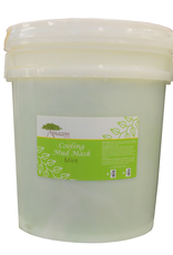 BeBeauty Mint Cooling & Soothing Mud Mask 5 Gal