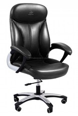 Whale Spa Deluxe Customer Chair 3211