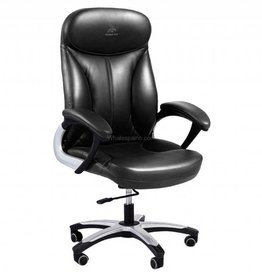 Whale Spa Whale Spa Deluxe Customer Chair 3211