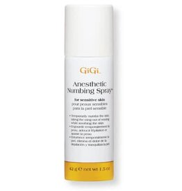 Anesthetic Numbing Spray 42g