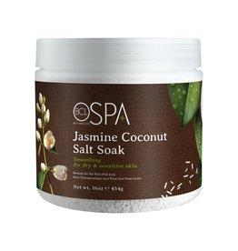 BCL Spa  16 oz Jasmine Coconut Dead Sea Salt Soak single