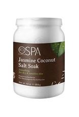 BCL Spa  64 oz Jasmine Coconut Dead Sea Salt Soak single