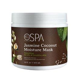 BCL Spa  16 oz Jasmine Coconut Moisture Mask single
