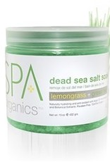 BCL Spa  16 oz Lemongrass + Green Tea Dead Sea Salt Soak single