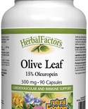 Natural Factors Natural Factors Herbal Factors Olive Leaf Extract 500 mg 90 caps