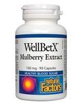 Natural Factors Natural Factors WellBetX Mulberry Extract 100mg 90 caps