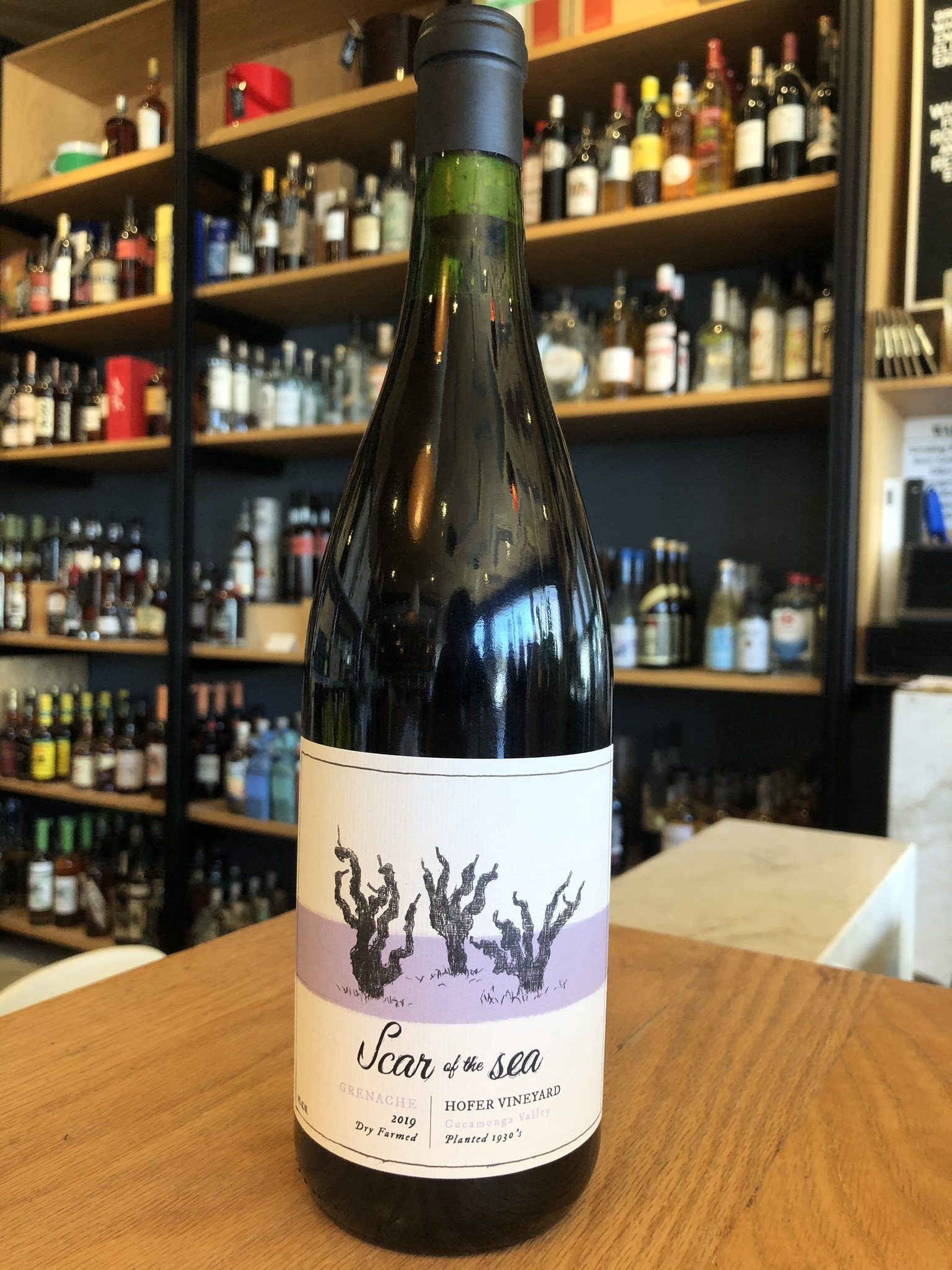 Scar of the Sea 2019 Scar of the Sea Hofer Vineyard Grenache 750ml