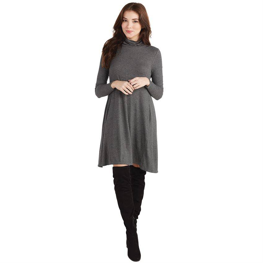 Topher Ribbed Jersey Turtleneck Dress
