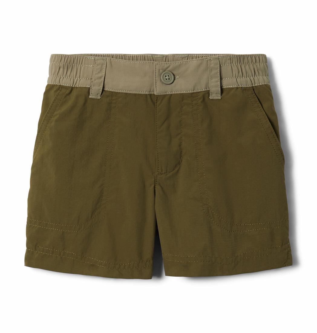 Columbia Sportwear Boys' Toddler Silver Ridge™ Short